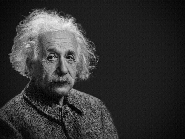 What Albert Einstein Can Teach You About Your Animal Health or Veterinary Career