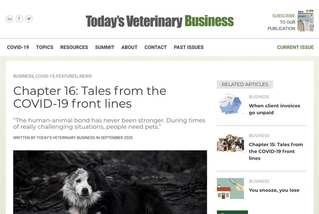 Animal Health Recruiter The Vet Recruiter Tales From The COVID Frontlines Chapter 16