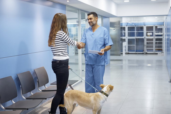 Veterinary Excellence and Our Commitment to Help YOU in the New Year